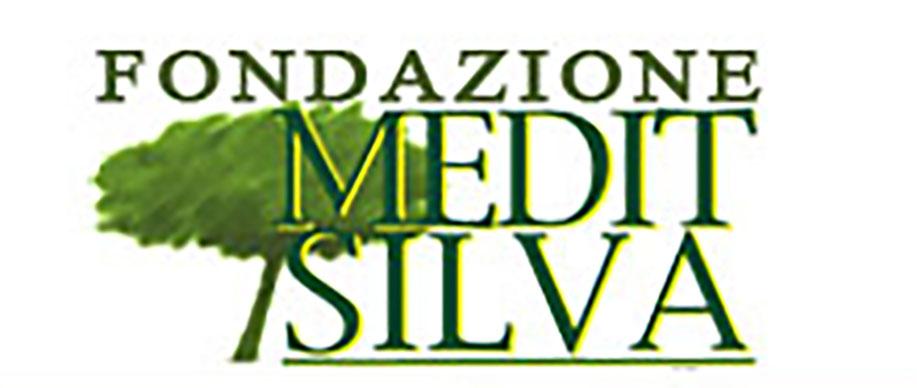 Fondazione Medit Silva